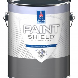 SW paint shield